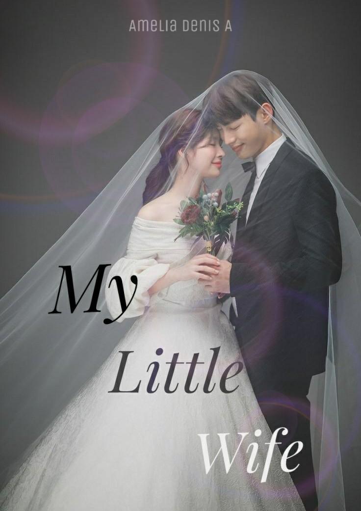 My Little Wife