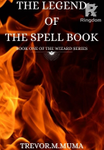 SPELL BOOK ( BOOK ONE OF THE WIZARD SERIES)