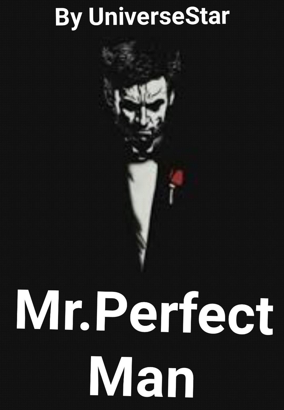 Mr. Perfect Man