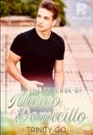 The Revenge of Marco Demicillo